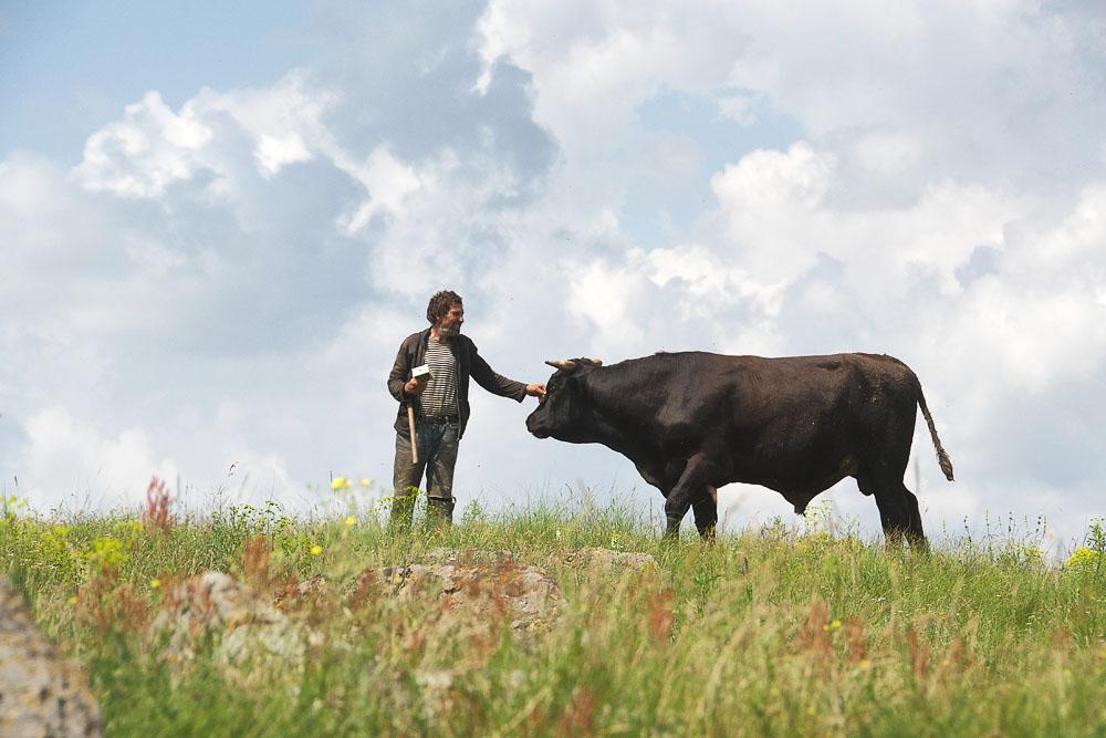 человек с быком