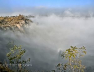 туман яром