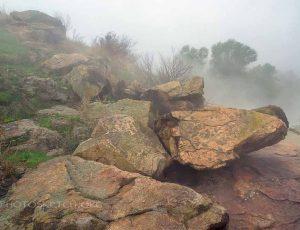 берега в тумане