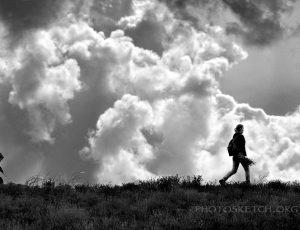 прогулки в поле