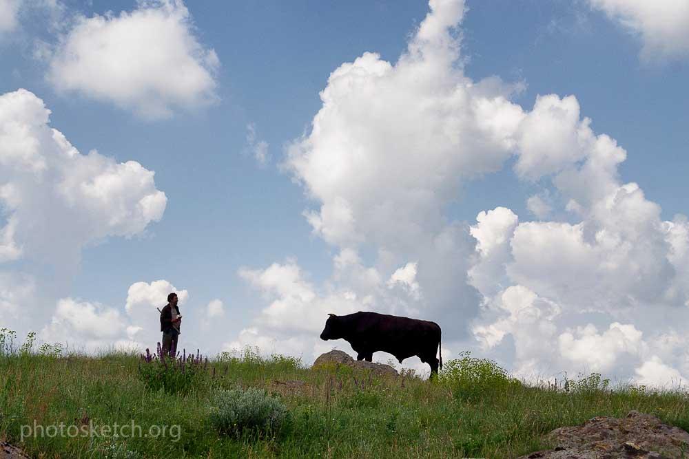 пастух в поле