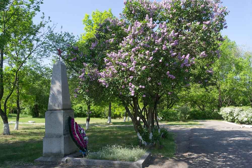 Могила и памятник Николаю Волошину находится в самом людном месте села Натальевка- в школьном дворе. У памятника цветет огромный куст сирени и свежий венок возложенный в день Победы