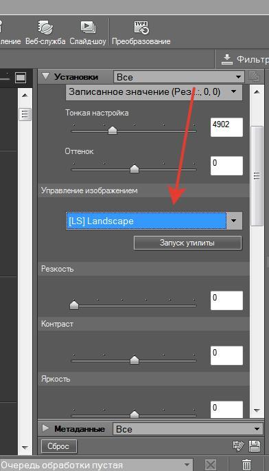 Кроме гибкого редактирования снимка в программе имеется набор предустановок «Picture Controls», вы сможете их найти в палитре редактирования под названим «управление изображением».